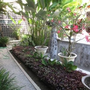 1Bali_gardens