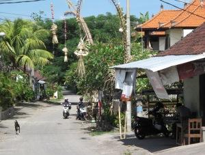 1Bali_street