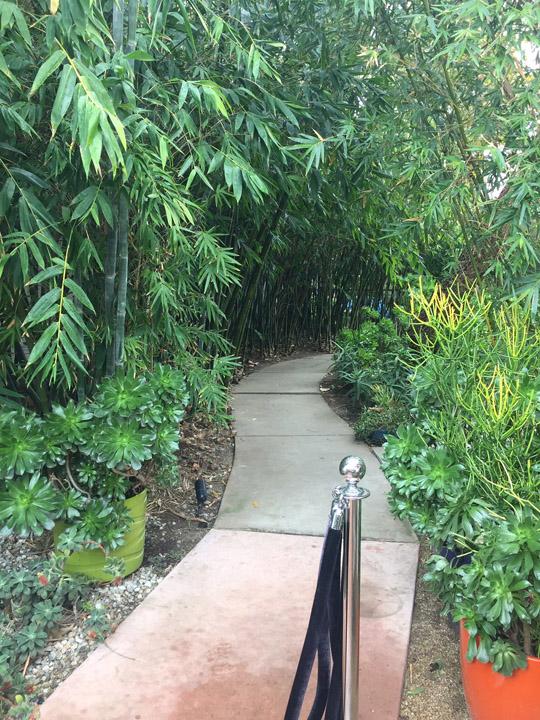 MiniBus Coffee Shop Bamboo walk